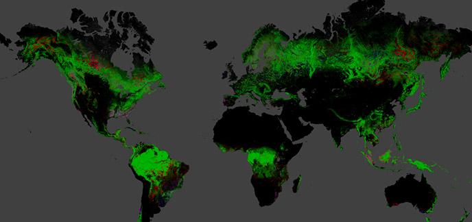 2013/11/18/google-earth-engine.jpg