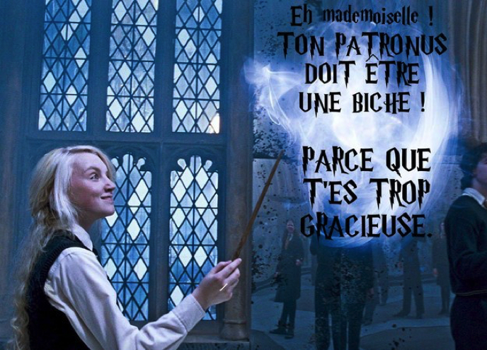 Images insolites - Page 3 Drague-harry-potter-12