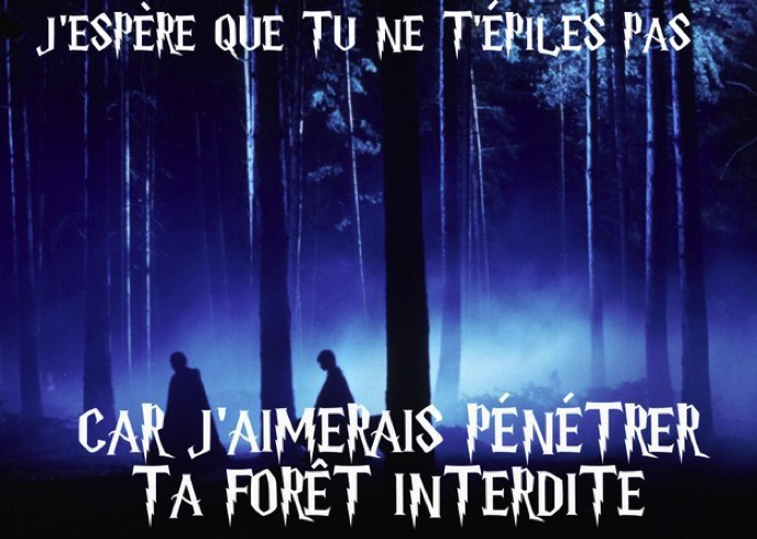 Images insolites - Page 3 Drague-harry-potter-14