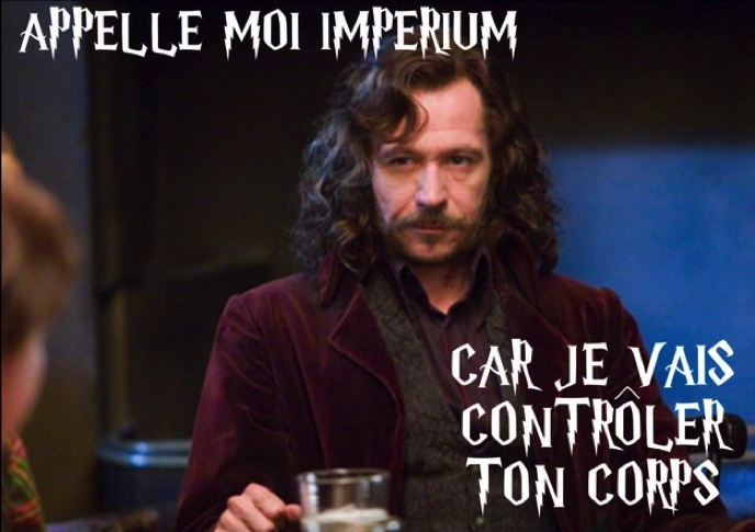 Images insolites - Page 3 Drague-harry-potter-2