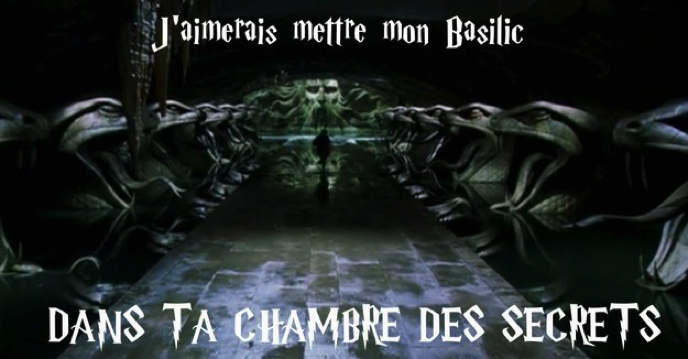Images insolites - Page 3 Drague-harry-potter-3