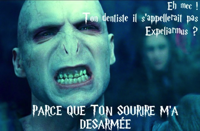 Images insolites - Page 3 Drague-harry-potter-5