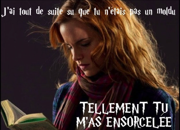 Images insolites - Page 3 Drague-harry-potter