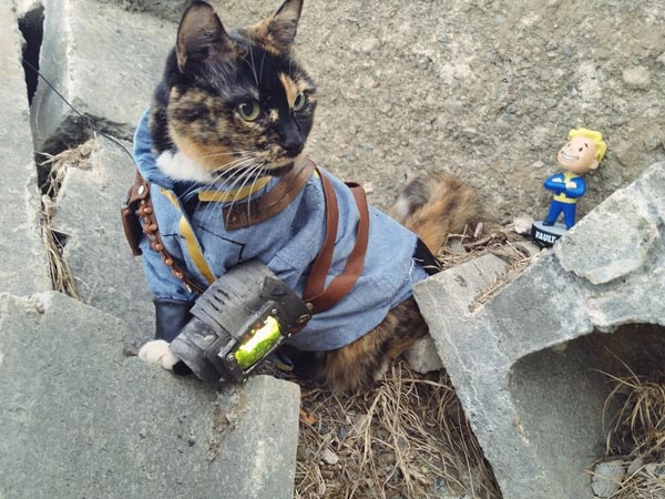 cosplay fallout 1