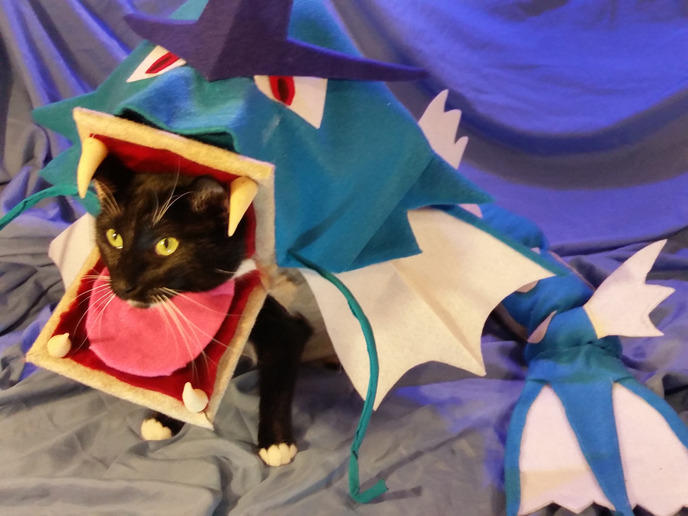 cosplay animaux 42
