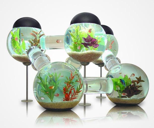 décor aquarium geek