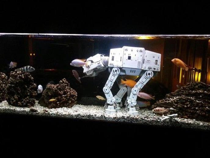 décoration aquarium geek