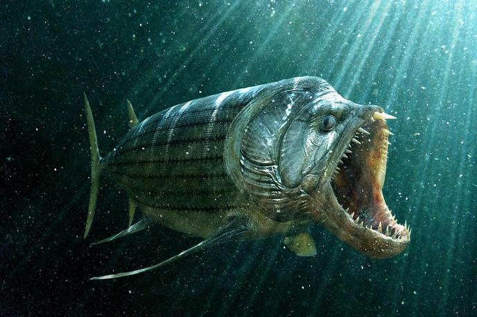 Top 10 des cr atures marines les plus terrifiantes aujourd for Predatory freshwater fish