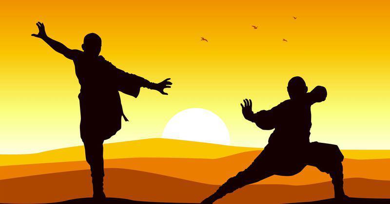MMA vs tai-chi : le combat qui fait polémique entre business