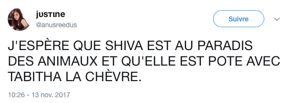 top tweet shiva mort 6