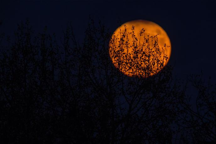 Super Lune, Lune bleue et éclipse au programme le 31 janvier