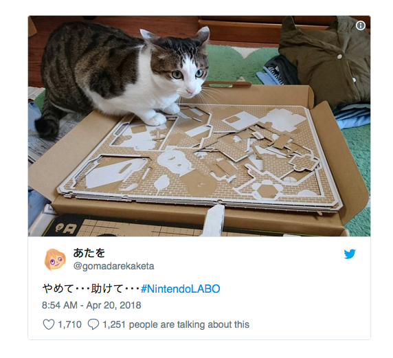 chat vs nintendo labo 6