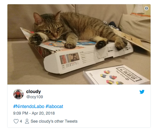 chat vs nintendo labo 1