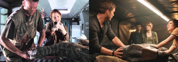 bébé t-rex et raptor
