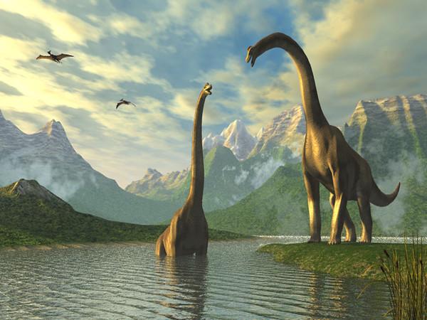 Brachiosaures