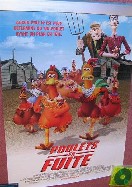 poulets en fuite
