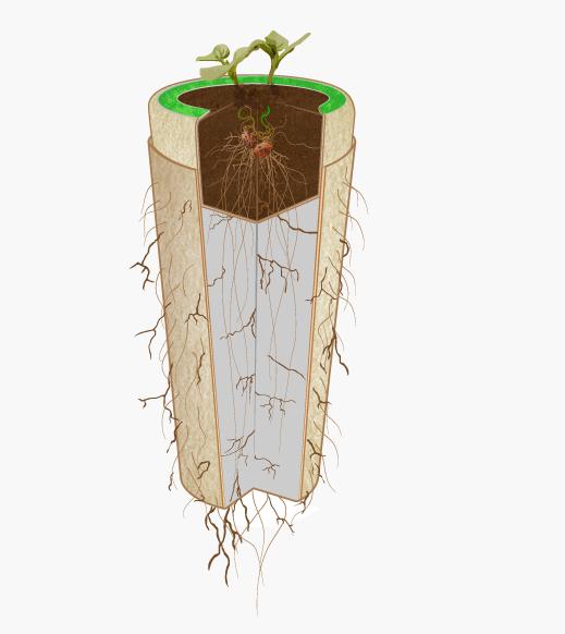 bios urn une urne fun raire qui vous transformera en arbre. Black Bedroom Furniture Sets. Home Design Ideas