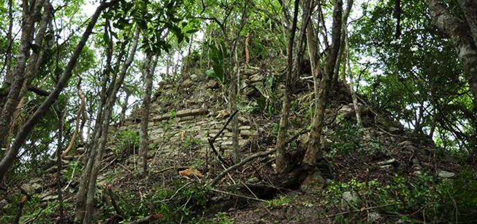 deux-cites-maya-decouvertes-jungle-mexique3-1.jpg