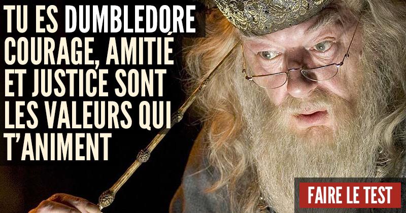 Quel personnage d'Harry Potter êtes-vous ? Dumbledore-1