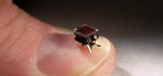 i_colonie-micro-robots-construit-structures1.jpg