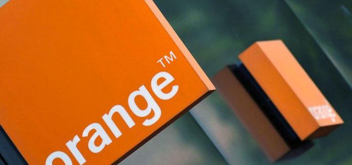 i_illust-orange.jpg