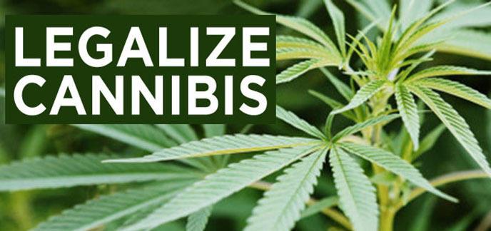 i_legalize-cannabis-1.jpg