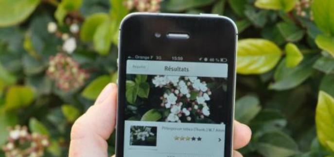 i_plantnet.jpg