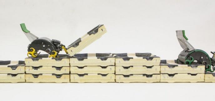 i_robots-termites-qui-construisent-en-se-coordonnant.jpg