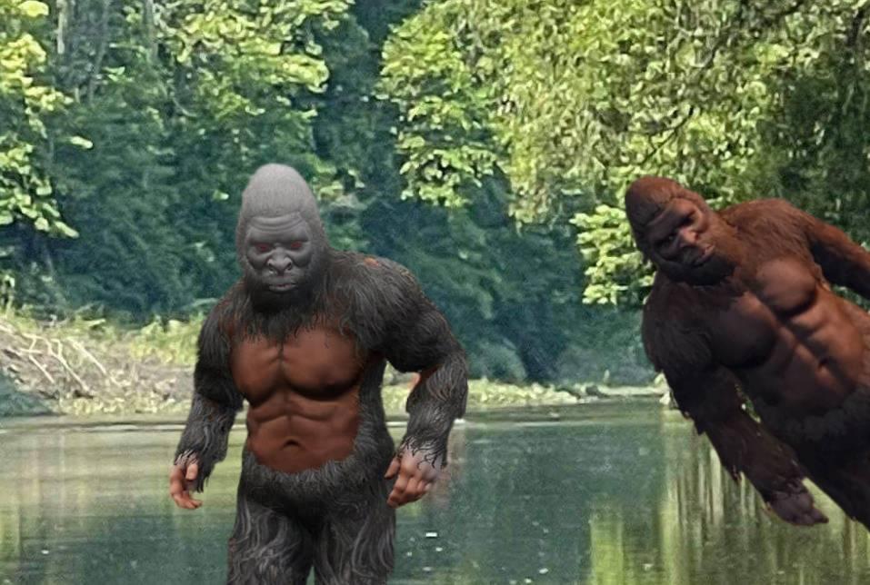 Bigfoot : une nouvelle vidéo sème le doute sur son existence
