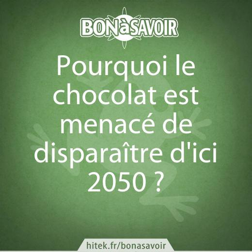 Plus de chocolat d'ici une trentaine d'années — Réchauffement climatique