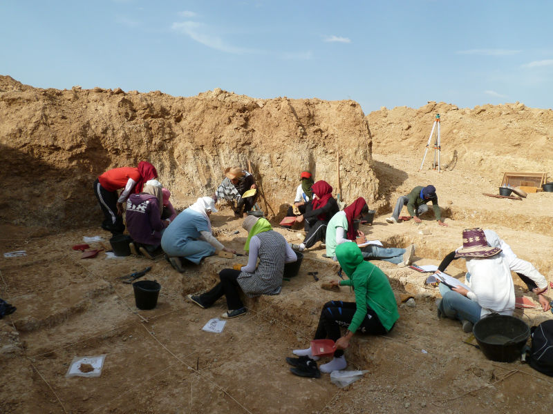 Resultado de imagen de Centro Nacional de Investigación sobre la Evolución Humana