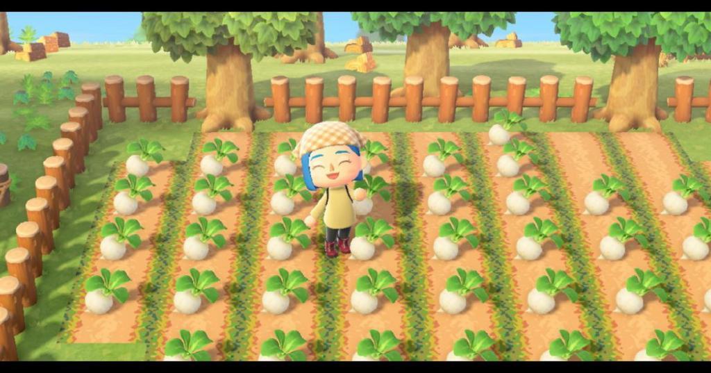 De nouveaux visiteurs et de nouvelles activités vont débarquer sur Animal Crossing